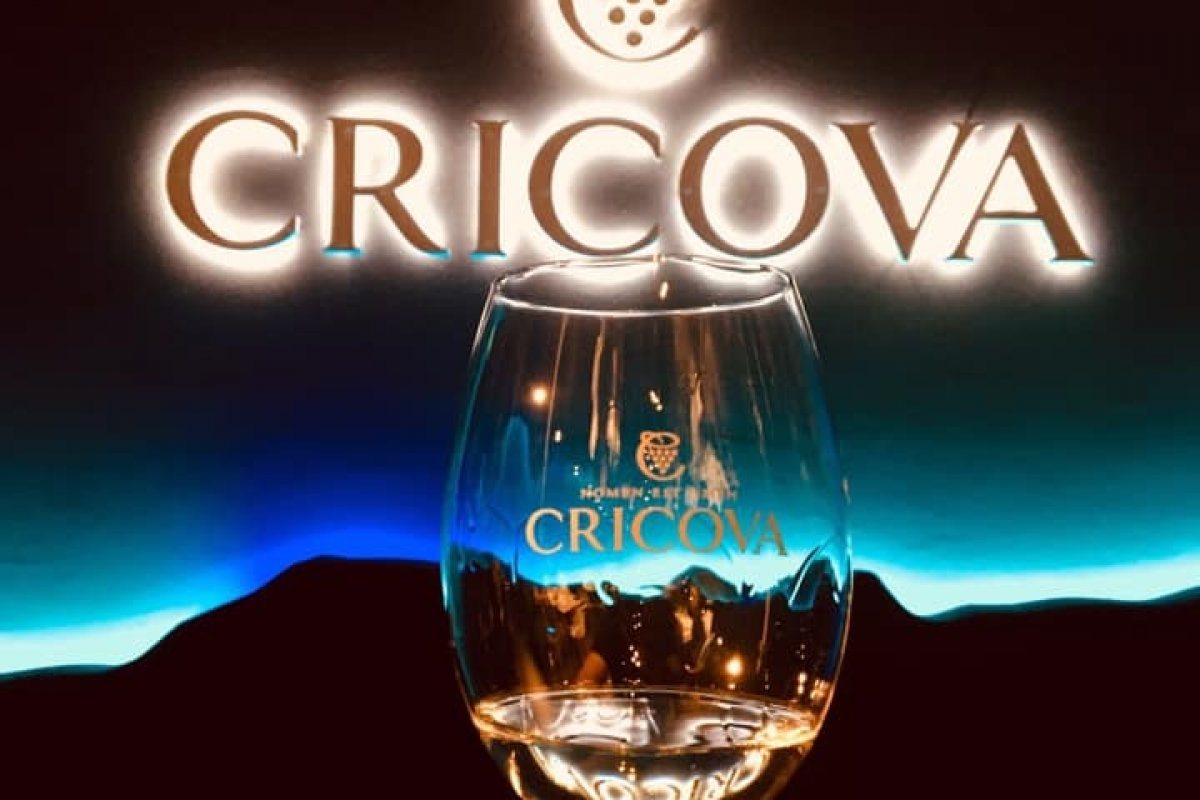 CRICOVA WINERY ONLY EXCURSION